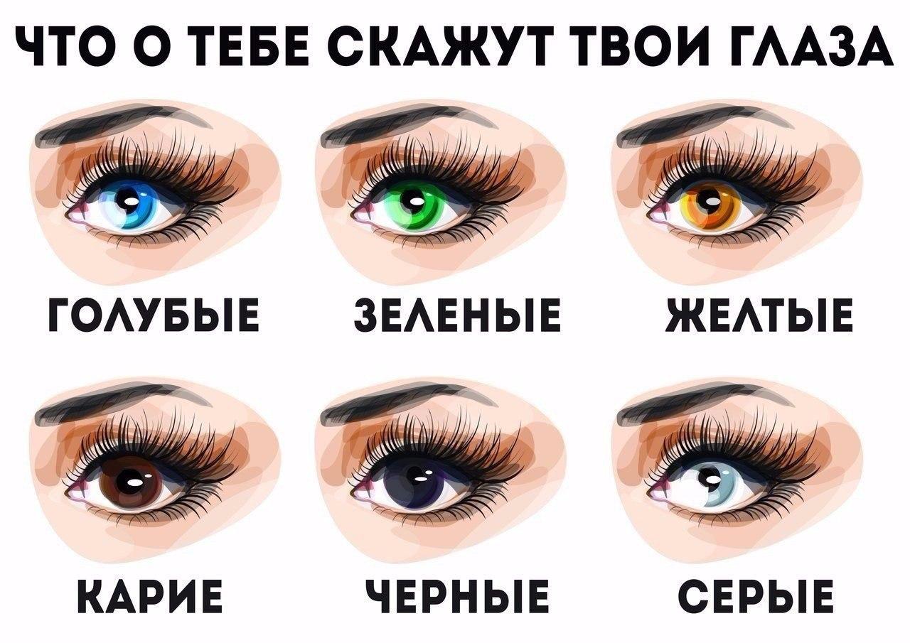Секреты физиогномики: характер по цвету глаз