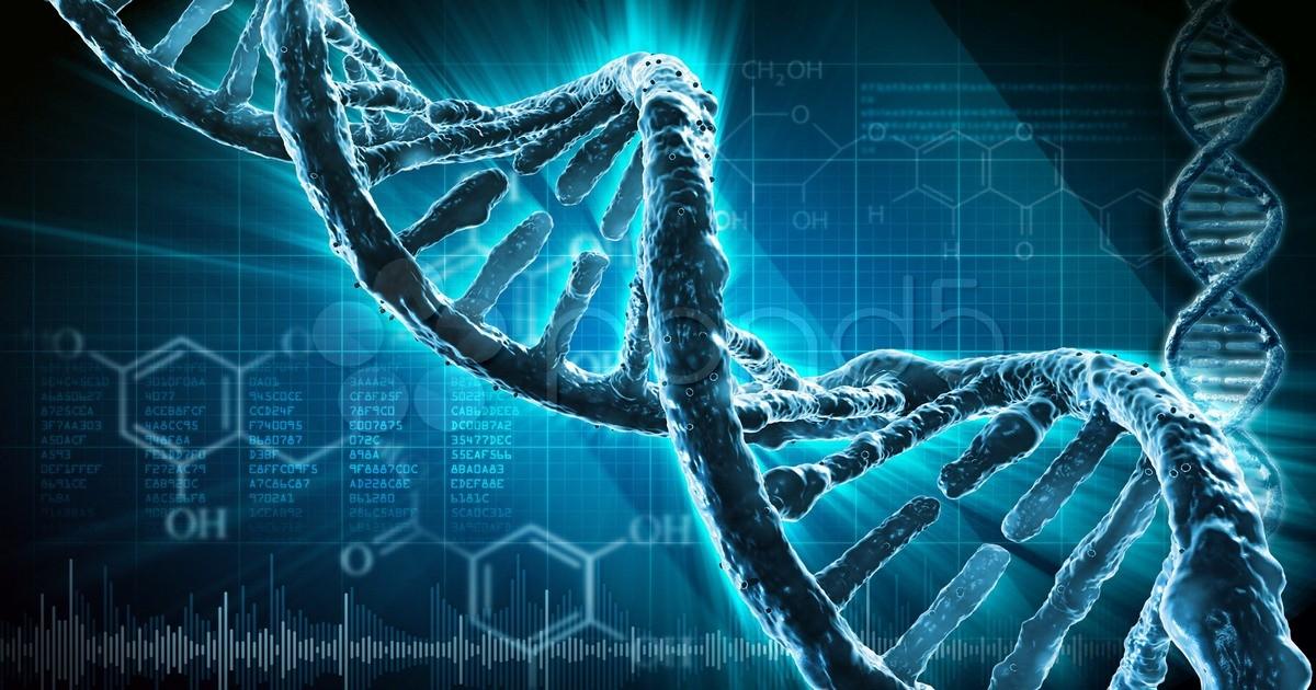 Самопрограммирование необыкновенной силы: разговор с ДНК