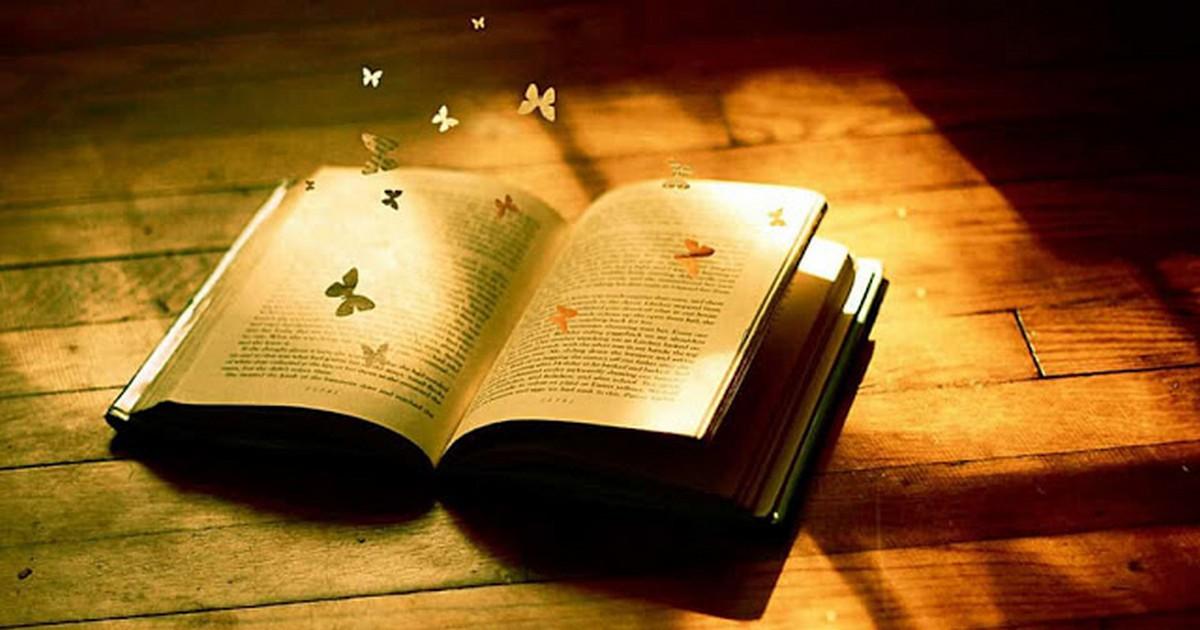 Черниговская: «Открытие нельзя спланировать, и идеи приходят в голову, когда человек к этому не готов»