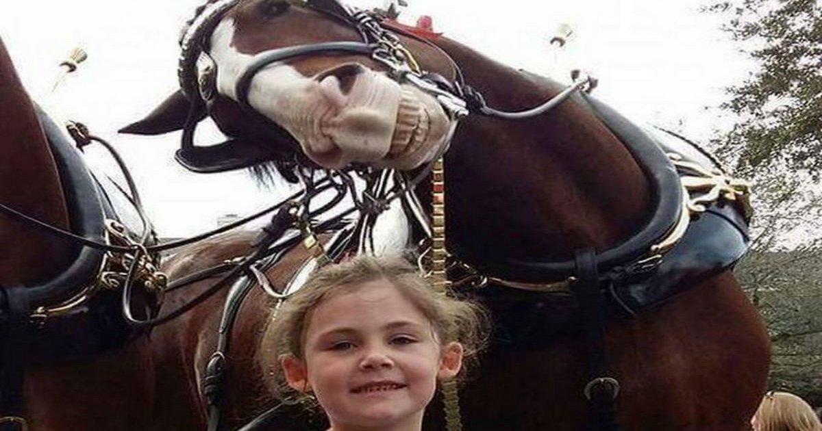 Папа сфотографировал дочь на празднике. А когда увеличили кадр — обхохотались